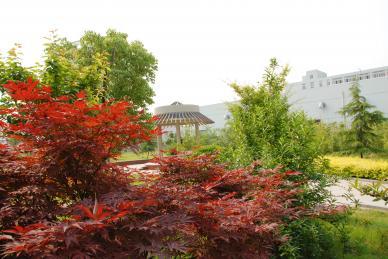 08.05.20生态公园生态公园2.jpg